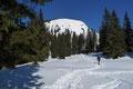 …auf eine kleine Anhöhe mit einer kleinen Lichtung unterhalb des Gipfelaufschwunges. Den Gipfel des Mayreck vor Augen überquerten wir diese und …