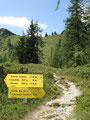 Jetzt aber mündete unser Wegverlauf von der Schotterstraße in den Steig 772 ein. Lt. Beschilderung 50 Min. zur Gratschneide Gasslhöhe und in einer knappen Stunde zum ersten Gipfel.
