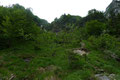 """… sie leiteten uns auf offenes Gelände, auf dessen die sogenannte """"Himmelsstiege"""" durch den steilen Grashang nach oben führte."""