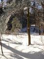 Ein paar Meter nach dem Gipfelkreuz machte ich eine Rastpause um im Anschluß daran auf dem selben Weg zurück zu wandern zum Ausgangspunkt meiner Bergtour. Fazit: Eine kleine aber feine Tour. In diesem Sinne. Lg. Ronald