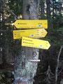 Der nächste Wegweisen wies uns links des Weges. 30 Min. bis zum  ersten Ziel. Der sogenannte Röt(h)elstein.