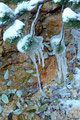 Schon toll anzusehen was die Mutter Natur mit Ihren Elementen zustande bringt. Eisimpressionen par excellence.