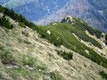 Nochmals ein Blick zurück auf den letzten Anstieg unserer Gratwanderung vom Geißhörndl zum Gipfel.
