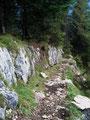 Nach der Schutzhütte ging es über den steilen Waldrücken talwärts.