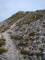 Nach der Weggabelung drehte der Weg in einem Bogen nach links zum letzten Gipfelanstieg. Über einen schroffen steinigen und im oberen Teil leicht ausgesetzten Steig stiegen wir …