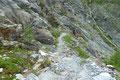 … ging es auch schon hinein in die landschaftlich sehr imposante Felsschlucht.