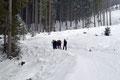 … folgten der moderat ansteigenden, sich nach oben schlängelnden Straße durch den Angerergraben höher.  Nördlich unterhalb des Jägerberges und dann an 2 einmündenden Forststraßen vorbei, ...