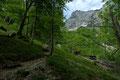 Nachdem man die unzähligen Holztreppen hinter sich gelassen hatte, ging es wiederum etwas gemütlicher durch den Wald. Über unseren Köpfen konnte man bereits die Bergstation der Seilbahn ausmachen.