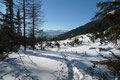 Nachdem auch das kurze Waldstück durchschritten war, mündete wenige Meter weiter des Weges unsere Abstiegsroute wiederum in die Spur des Aufstieges ein.