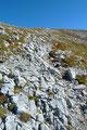 Eine weitere Serpentine nach rechts und siehe da:  Hier mündete von links ein Jagasteig über den Grat ein! Der Einheimische hatte mich Wortwörtlich ausgebremst. Mit einem Grinser im Gesicht stieg zum Gipfel empor.