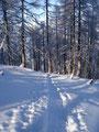 """Raschen Schrittes vorbei an der Wildalm und schon lag die steile Schneise wieder vor uns. Das Foto nenne ich einfach """"Auf Frontalkurs""""!"""