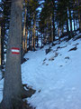 Nach einer ausgiebigen Gipfelrast, gings wieder das eisige Steilstück talwärts und ...