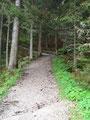 Weiter folgte ich dem sehr gut angelegten mäßig ansteigenden Pilgerweg bis …
