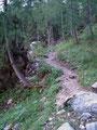 In weiteren Serpentinen, durch das Ackerwaldl, ging's weiter und weiter bergwärts. Irgendwie konnte ich jetzt schon erahnen, daß heute nicht wirklich mein Tag war. Nichts ging locker und rund von sich, sondern eher träg und kämpfend.