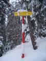 Der nächste Wegweiser war erreicht. 1 Std. weiter bis zum Gipfel konnten wir erkennen und …