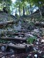 Über eine hurtig ansteigende, etwas in Mitleidenschaft gezogene Holztreppe ...