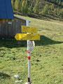 Bei dieser Weggabelung bogen wir links ab und folgten nunmehr kurz dem Weg Nr. 18 und 218 Richtung Almkogel (2 1/4 Std.).