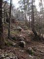 Nichts desto trotz mußten wir weiter wandern. Das Bild zeigt den Wegverlauf unmittelbar unterhalb des Gipfelkreuzes.
