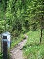 Wir verließen nun die Forststraße und folgten dem Wegweiser durch den Wald Richtung Gstatterboden zurück.