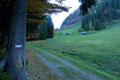 Dort, wo nun auch der 611er Weg in den Meinigen einmündete, drehte sich die Almstraße entlang des Waldrandes in einem weiten Rechtsbogen, den noch verschlafenen Hütten der Fuchsalm zu.