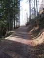 Noch ein kurzes Stück diese Forststraße entlang ...