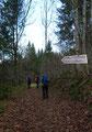 Bereits kurze Zeit später leiteten uns die Rot-weiß-roten Markierungen in einen Wanderweg hinein. Das bunte Laub bedeckte den Waldweg beinahe zur Gänze. Bei jedem Schritt, jedem Tritt raschelten die losen Blätter unter unseren Füßen.