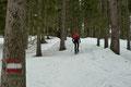 Das Gelände begann nun kontinuierlich anzusteigen. Die nicht zu übersehenden rot-weiß-roten ÖAV-Markierung und die gut ersichtliche Schneespur lotste …