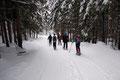 … darunterliegenden Forststraße, welche uns durch den Angerergraben zum Ausgangspunkt Tal auswärts brachte. Eine zache, aber dennoch tolle Schneeschuhtour auf den östlichen Eckpfeiler der Haller Mauern. Lg. Die TUBBSianer