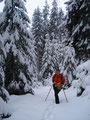 Die Schneedecke wurde mit zunehmender Höhe mehr und mehr, aber es war noch immer bestens zu gehen.