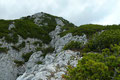 Felsig und steinig schlängelte sich der rot punktierte Bergsteig durchs Latschenwirrwarr Richtung des Gipfeldaches empor und man gewann relativ rasch an Höhe.