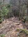 … den steinigen, steilen Steig in Serpentinen abwärts ging.