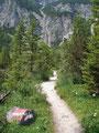 Flott schritten wir aus und folgten dem schönen Weg, auf das bereits sichtbare Hüttendach zu.
