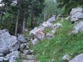 Dem  gut markierten Weg folgend komme ich auf ein kleines Plateau.......