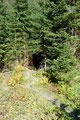 Die zweite Quelle mit dem Häferl links liegen gelassen, führte mich der Steig erneut in den Wald hinein.