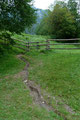 Nachdem Wolferl  und ich die Wandersteifel geschnürt und den Rucksack geschultert hatten, zogen wir Richtung Heßhütte los. Zu diesem Zeitpunkt wusste ich noch gar nicht welche Route ich heute einschlagen würde. Mal sehen? Durch ein Gatterl hindurch und …