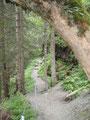 Weiter führte der Weg entlang des Riesachbaches, ...