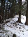 Wir schritten den Grad des Berges entlang ...