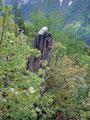 Vorbei an einem Steinmännchen über einen lichten Berghang ...