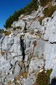 Steintauben führten mich über einige Felsstufen gipfelwärts, wo gelegentlich der Einsatz der  Hände von Nöten war.