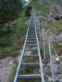 Nun führte mich der Steig 215 über diese Leitern ziemlich steil bergwärts, meinem Ziel näherbringend.