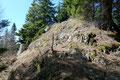 Beim letzten Aufschwung über niedrige Felsstufen auf den Felsgipfel lichteten sich die Bäume wieder, …