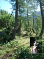 … wanderten vorbei an der Langgangalm und netten Steinmandl'n zum Hinteren Langgangsee.