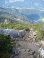 Nun hatte ich auch die schroffen, rutschigen Felsstufen überwunden, erreichte wiederum die Latschenobergrenze.
