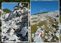 … gelangten wir zur Gipfelmulde unter halb des Traweng-Gipfels. Nun leitete der Steig anfangs über Felsen und anschließend über den breiten schroffen Rücken in Richtung des höchsten Punktes bergauf.