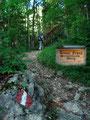 """… der mäßig ansteigende """"Breuer Franz Steig"""", dem Sabine und ich in den Wald folgten."""