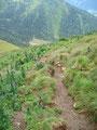 Vorsichtig, um nicht in die Schei…… zu fallen stieg ich den gatschigen Steig abwärts.