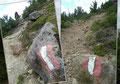 Also bogen wir rechts ab und folgten den rot-weiß-roten Markierungen in weiten Kehren, anfangs durch Latschengebüsch, …