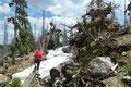 Im Anschluss einer neuerlich kurzen Gipfelrast und dem dazugehörigen Fotoshooting traten wir entlang des Anstiegs den Rückweg an. Entwurzelte Bäume sorgten beim Balancieren für die nötige Aufheiterung.
