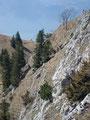 Ich konnte aber auch die nächsten aufsteigenden Bergsteiger beobachten. Wie hier gut zu erkennen ist, war das letzte Stück zum schmalen Grat nicht seilversichert.