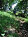 ... und somit kämpften wir uns die letzten Meter bis zum Bergkamm hinauf.